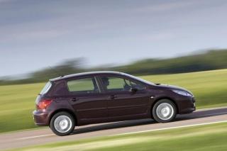 Peugeot 307 se trese u leru