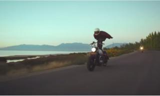 Surferi na asfaltu