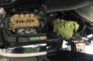Što se dogodi kad u motor, greškom, utočite 5 l sredstva za pranje stakla?