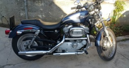 Harley Davidson Sportster XL883 Custom