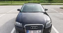 Audi A3 1.9 TDI, 2006. g.